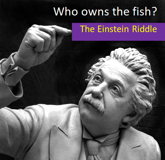 Who owns the fish?- The Einstein Riddle